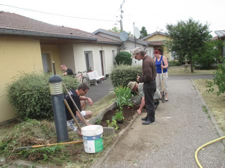 Plantation et jardinage